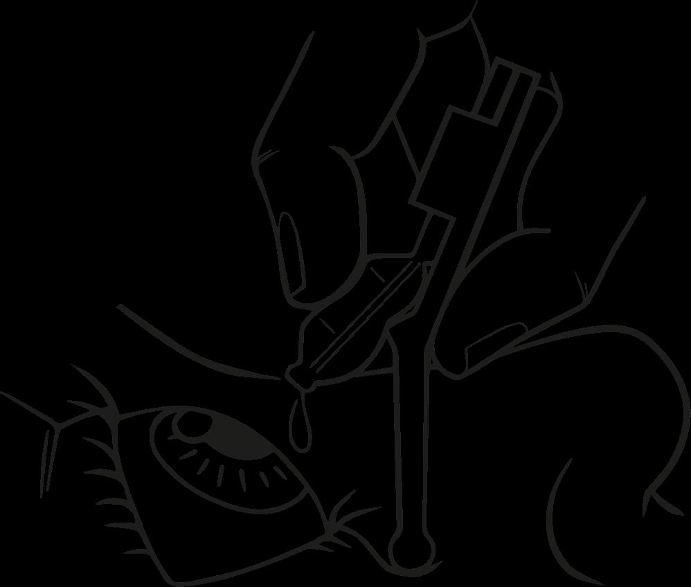 Apoye verticalmente Oculeed en el párpado inferior